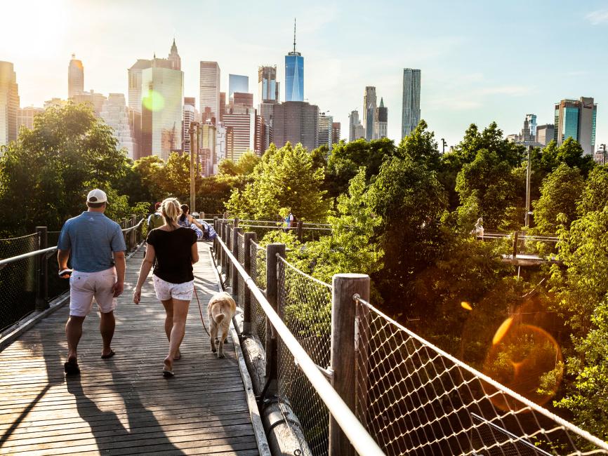 Mann und Frau laufen mit Hund über eine Brücke Richtung Innenstadt